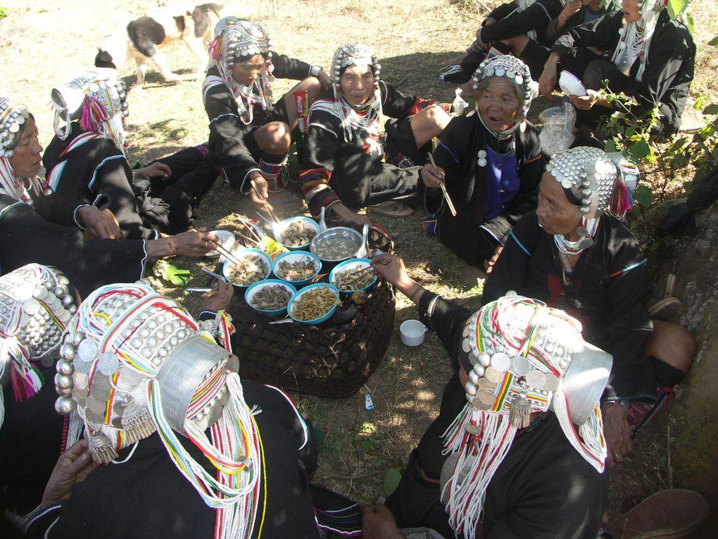 Jeudi 7 janvier 2010, festival pour la nouvelle année dans le secteur de Ho Kyin, habité par les Akhas. Toute la population a sorti ses plus beaux habits pour l'occasion.