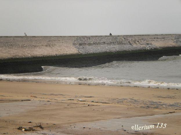 le littoral de la Seine maritime aunord du Nord