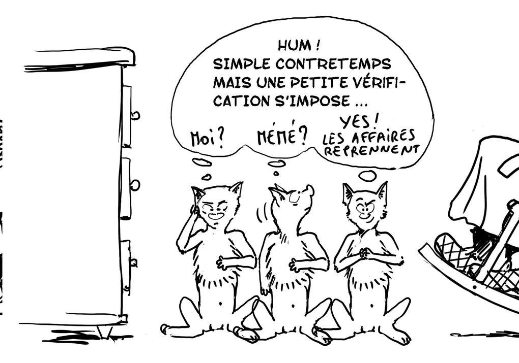 Chat Dingue, Poisson Rouge et Mémé. Leurs aventures.