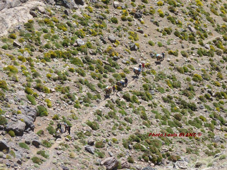 20120602-rdt-Maroc
