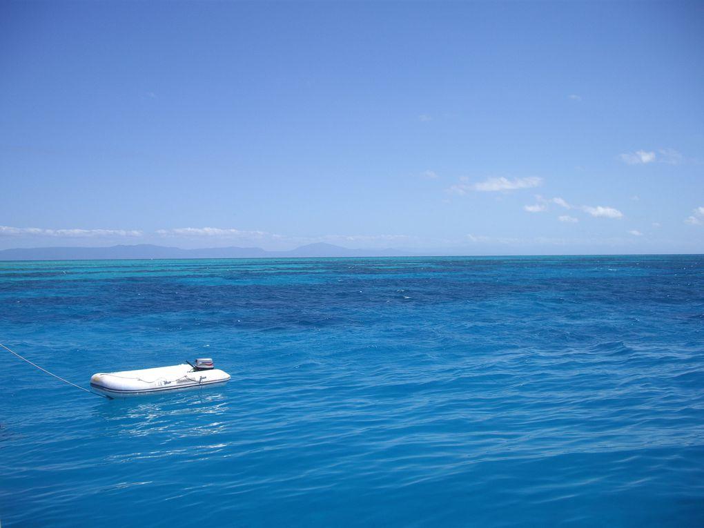 Album - 07 Coral-Reef