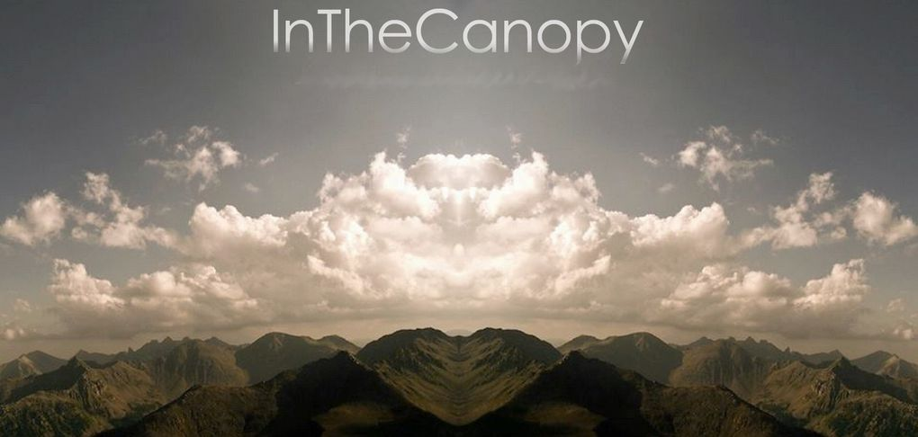 Album - Inthecanopy-laClefstgermain
