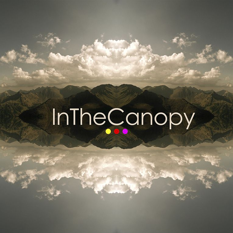 Album - In-the-canopy-Truskel-2013