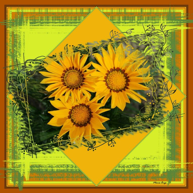 Album - jardin---campagne