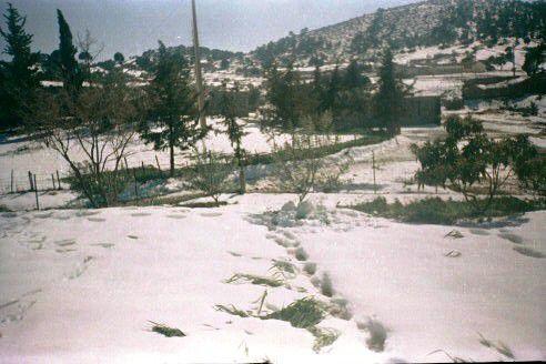 Paysages d'l-hachimia