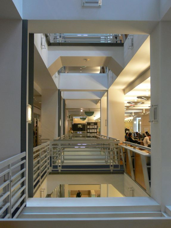 Album - Museums-Architecture