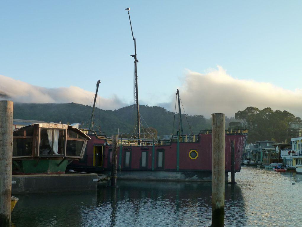 Album - Sausalito houseboats