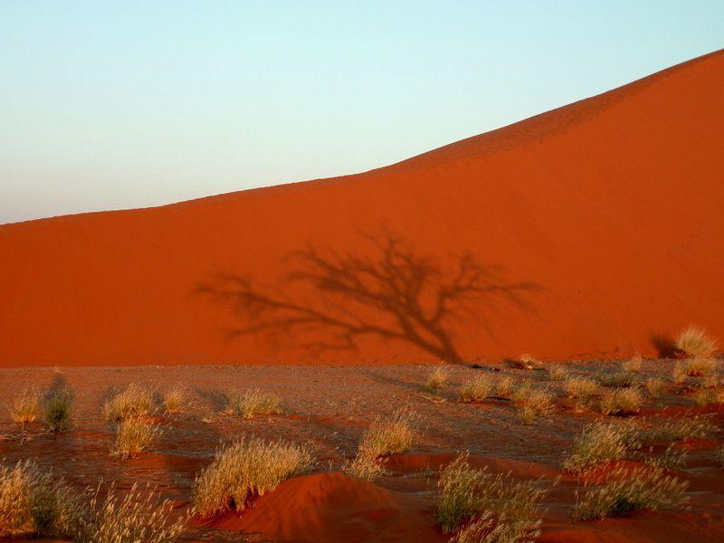 Album13-Namibie n°1