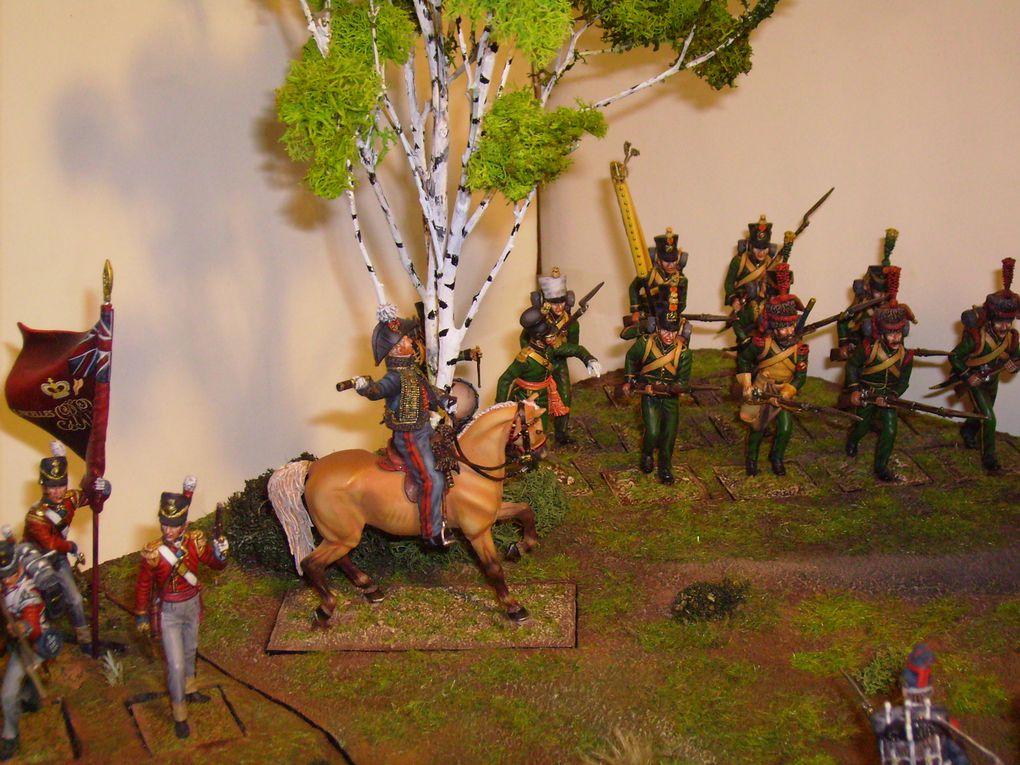 """Plus de 150 photos réalisées au fur et à mesure de la réalisation de ce diorama """"Waterloo"""" composé de trois éléments assemblés représentant une surface d'environ 1 mètre carré."""