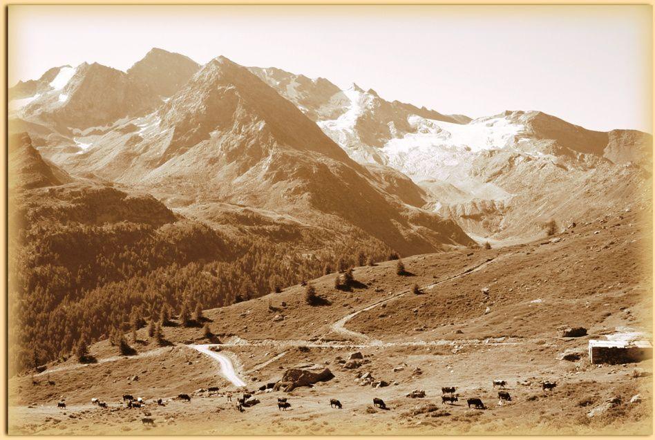 Album - Arp-Vieille-dans-la-Commune-de-Valgrisenche
