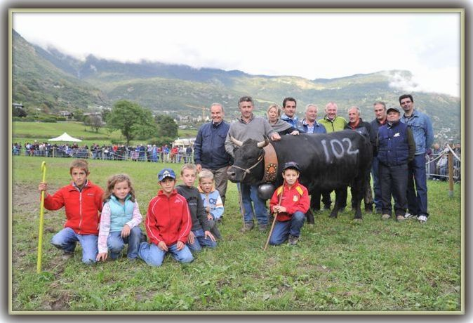 Album - Chatillon-2013