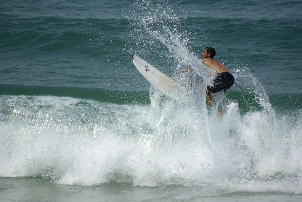 Album - Surf--bodyboard