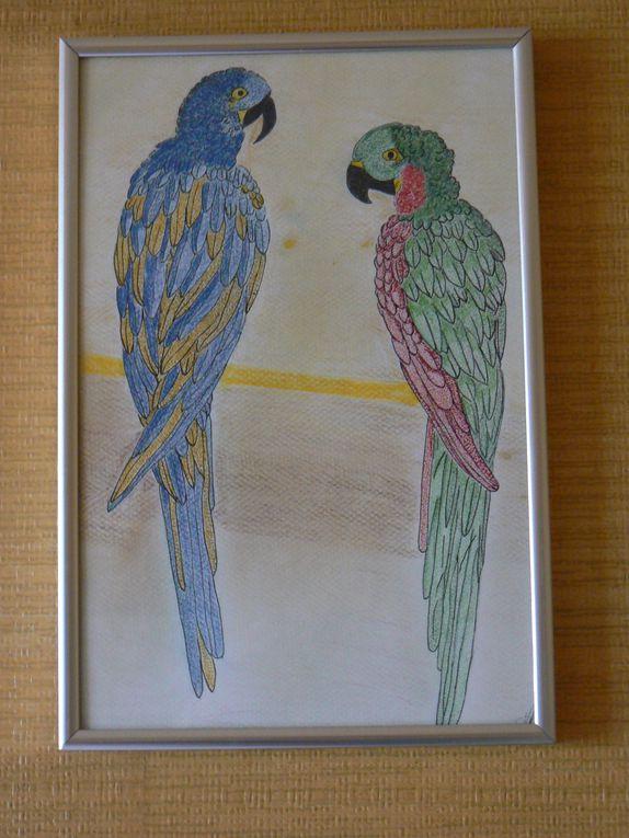 dessins et peintures, amérindiens