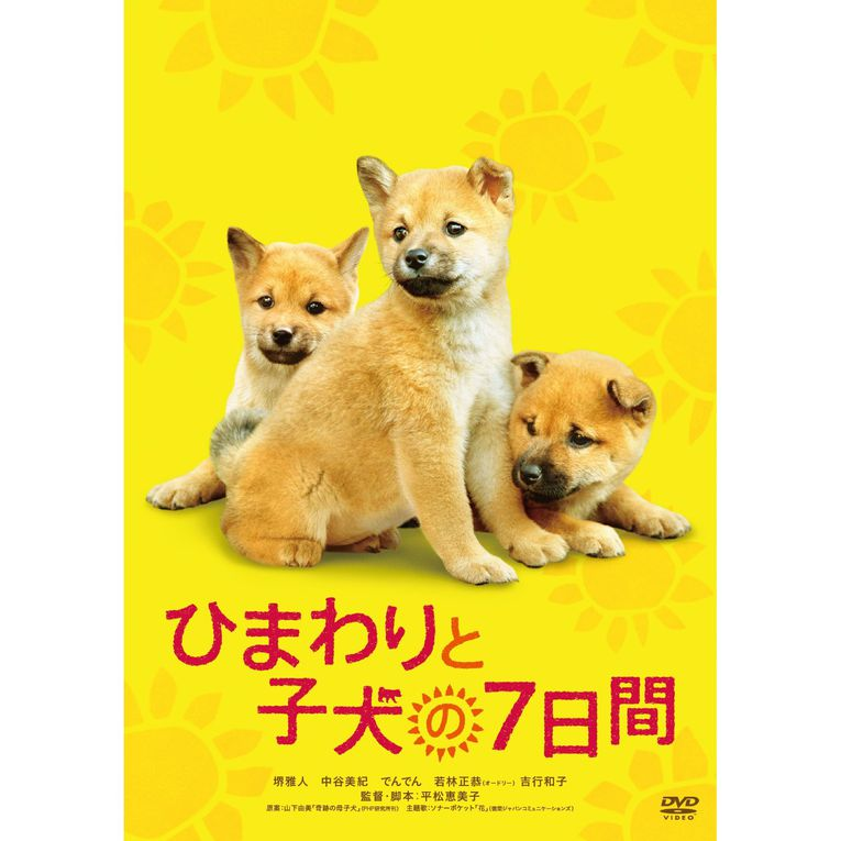 FILM-CHIENS-JAPONAIS JAPANESE DOGS BREED MOVIES