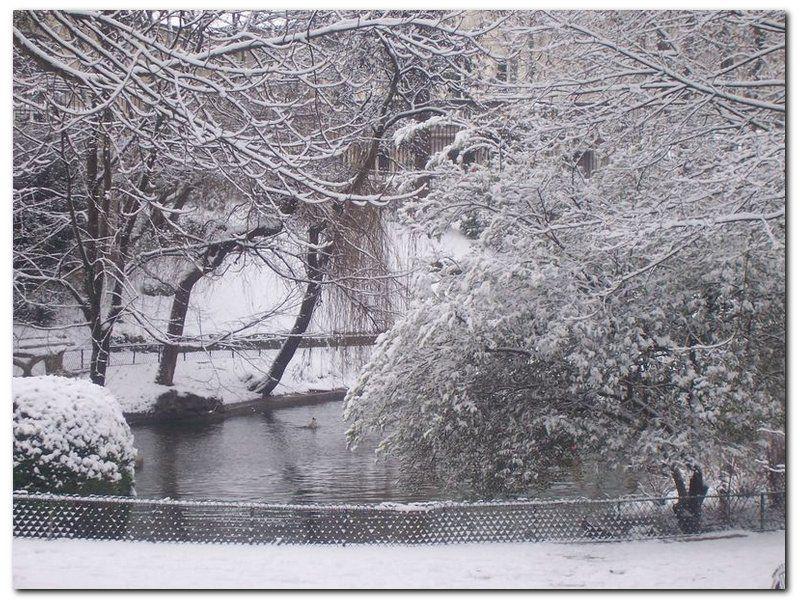 Photos de neige perso