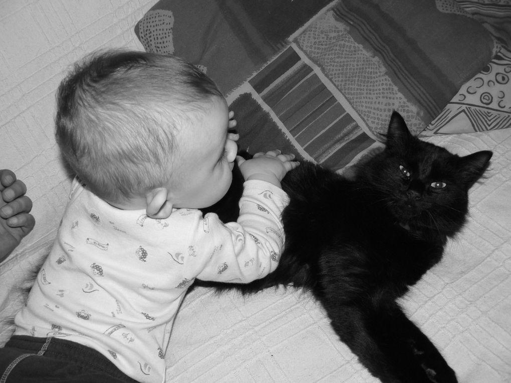 les enfants, les animaux, les vacances...un bric-à-brac de petits riens qui font un grand tout...actulisé au fil du temps...