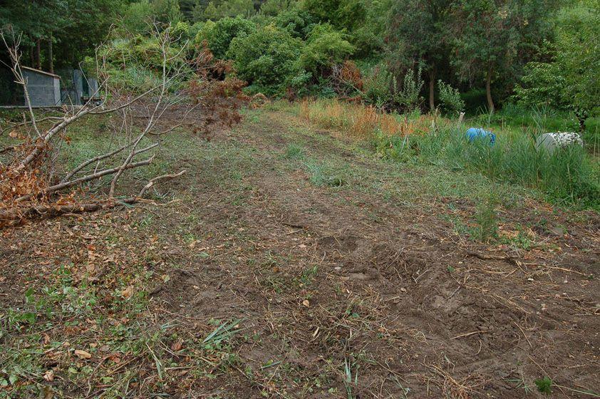 En 2007, nous avons nettoyé le terrain ... avec des outils