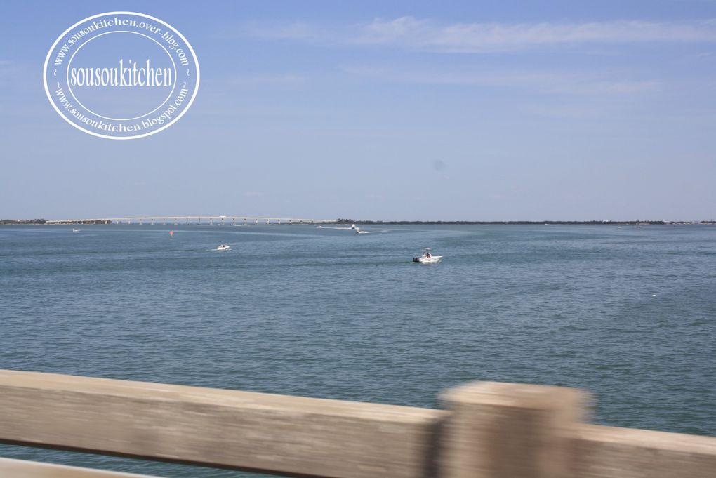 Album - Sarasota-Beach-USA 2012