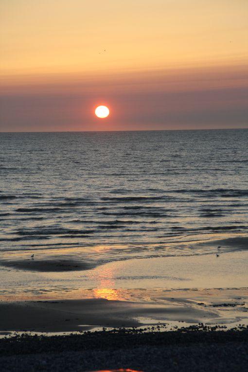 La Baie de Somme, lieu gigantesque, romantique, naturel, où la ballade et la rêverie sont amies