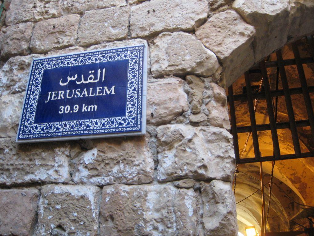 Album - Palestine Noel 2010