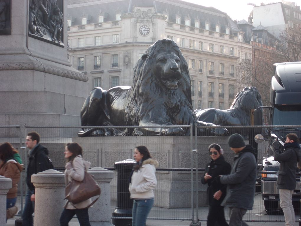 Album - TRAFALGAR-SQUARE----PICADILLY