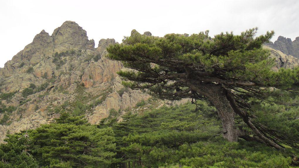 Album - Vacances-Corse-Mai-2011