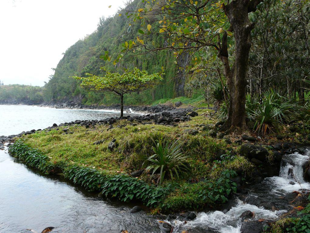 Album - Anse-des-Cascades