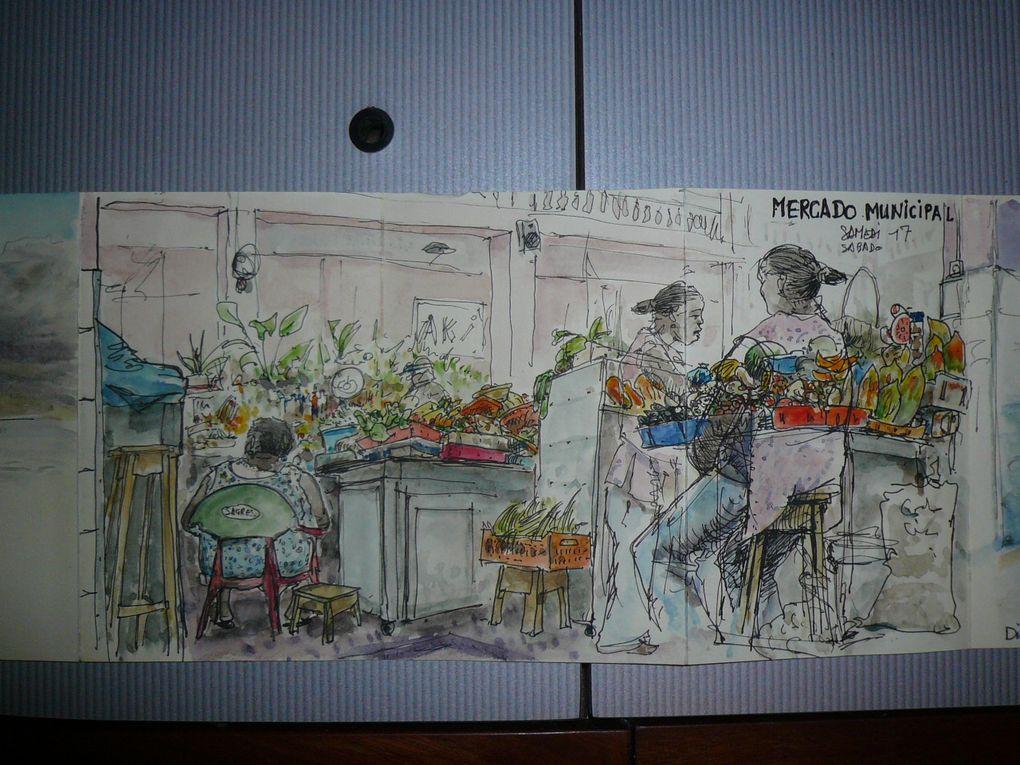 Album - Dessins-Gregoire