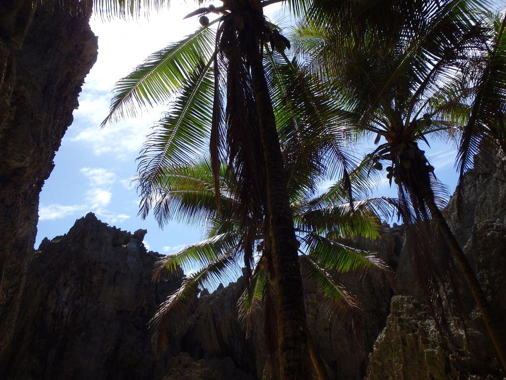 Album - S5-2---Cook--Tonga--Fidji