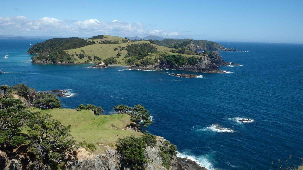 Album - Saison-5-5---Nouvelle-Zelande-3
