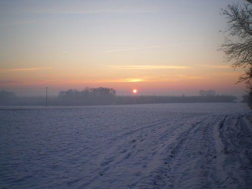 Album - Promenade-matinale-et-glaciale-mais-que-c-est-beau
