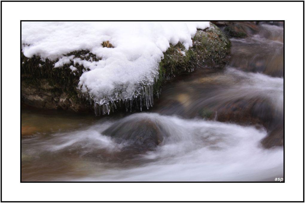 Album - l'eau vive
