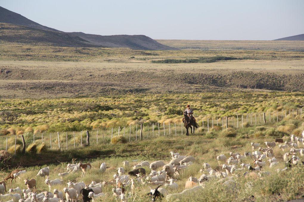 Album - ARGENTINA-CHILI-Paysages-de-frontieres-FrontiersLandscapes