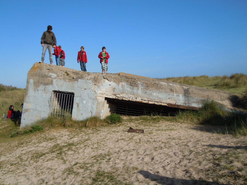 Y - Album - 2011-05-13 souvenirs des plages
