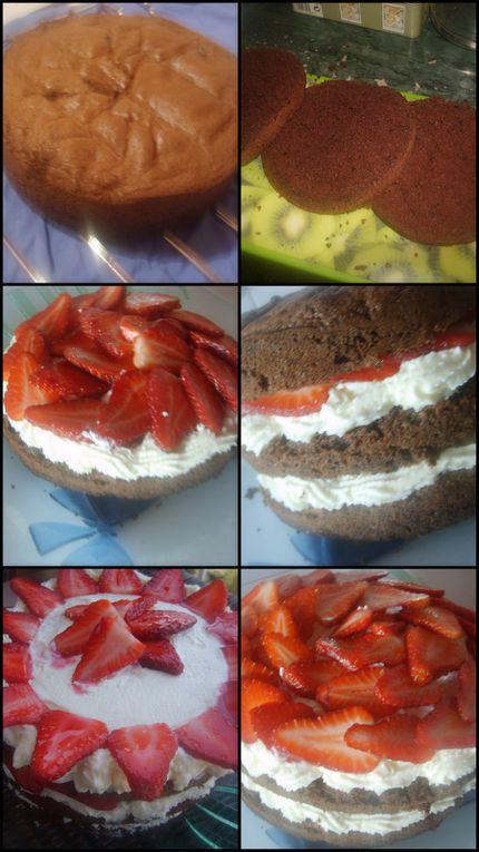 Album - fraisier-fraises-choco