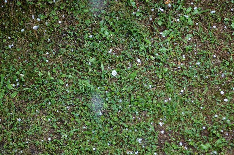 évènement climatique en août 2013 dans notre jardin à Egliseneuve 63160