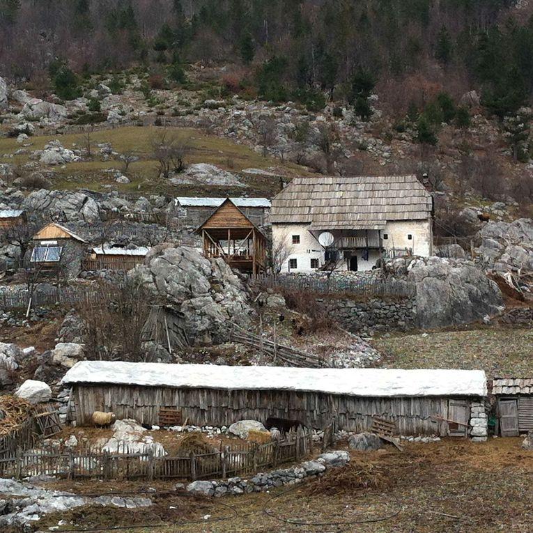 Album - Albanie-2014