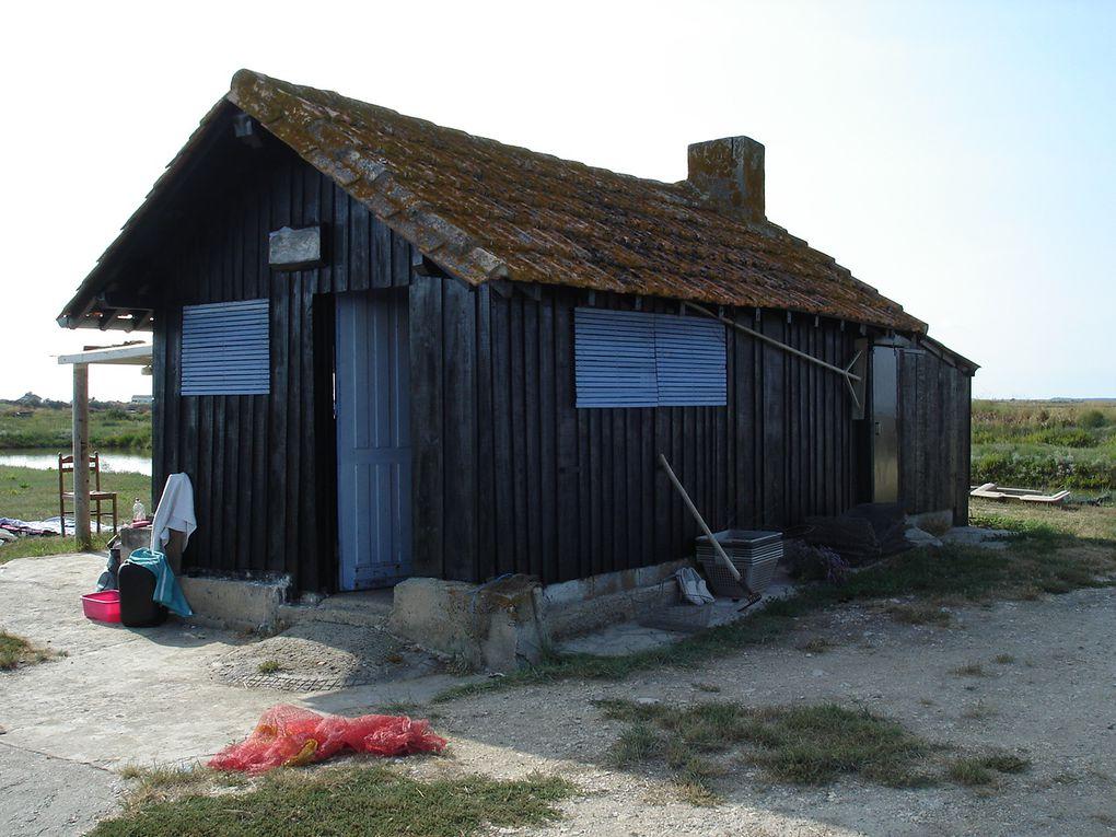 Installée en Charente Maritime depuis avril 2009, je profite de cette magnifique région et je découvre sa gastronomie.