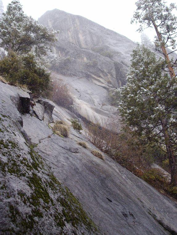 Album - Yosemite