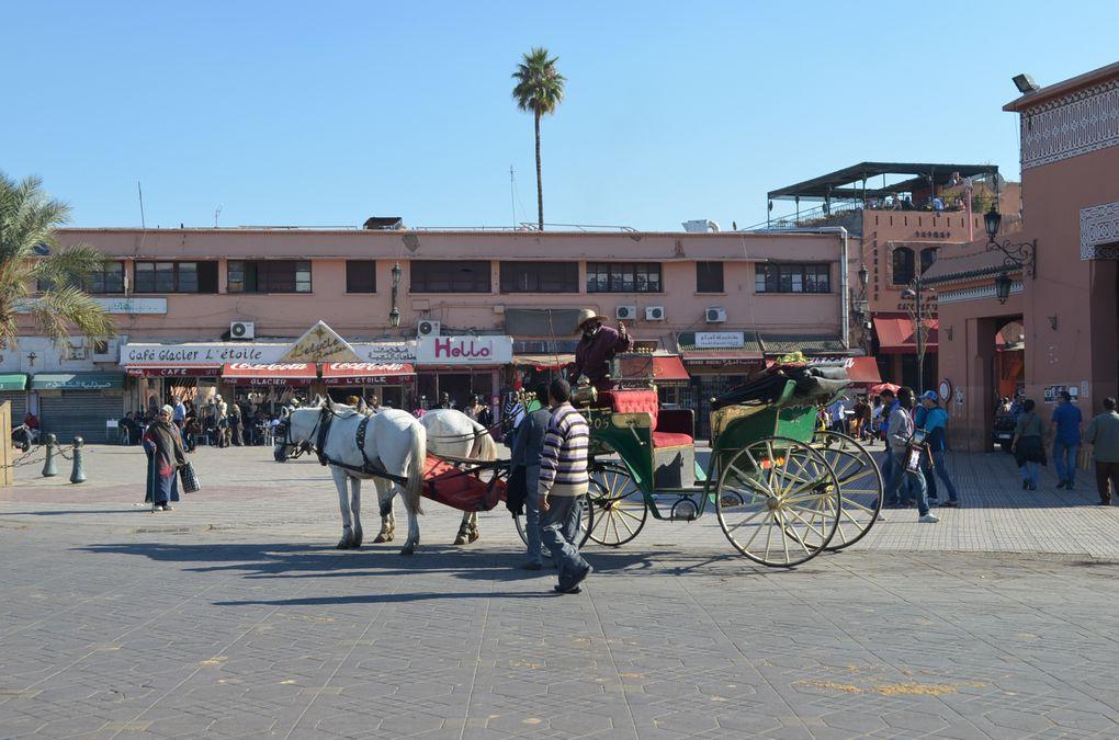 Mon séjour à Marrakech Décembre 2012
