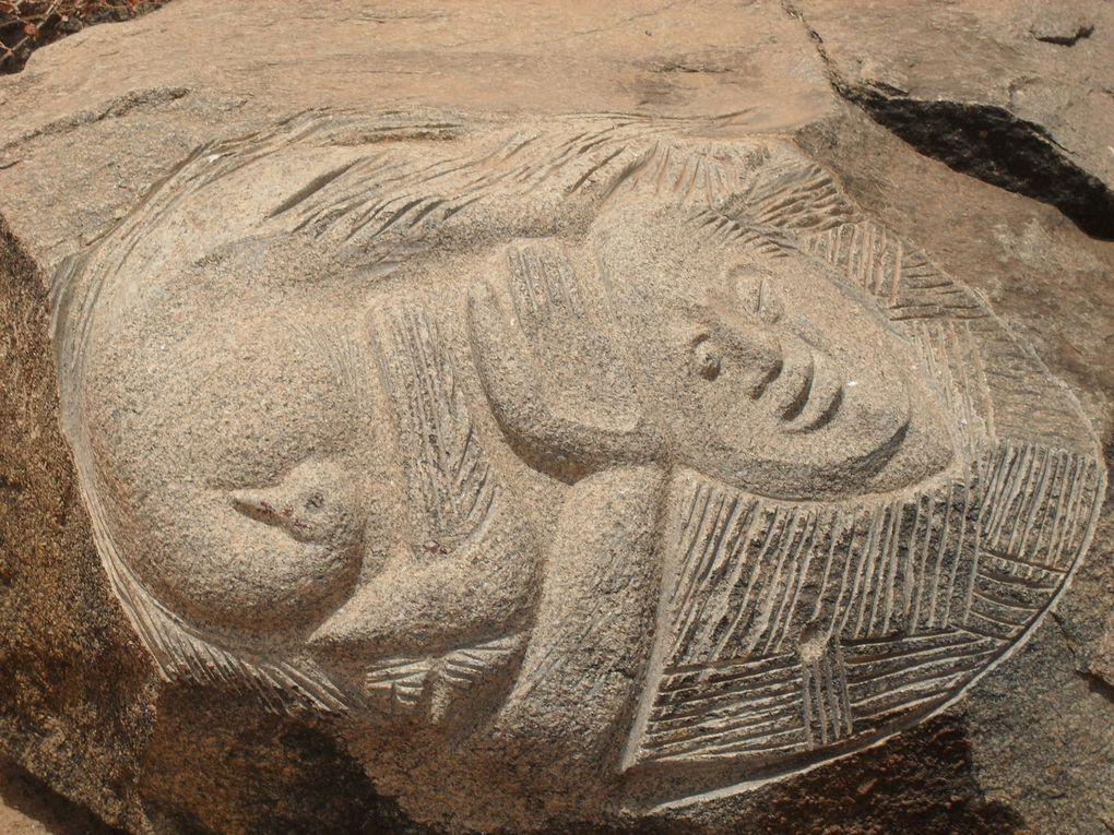 Album - Site de Laongo sucultures sur granit