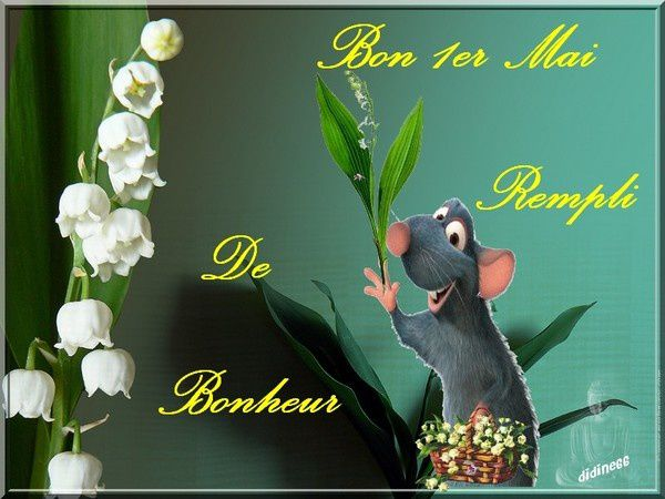 mes images et blingees