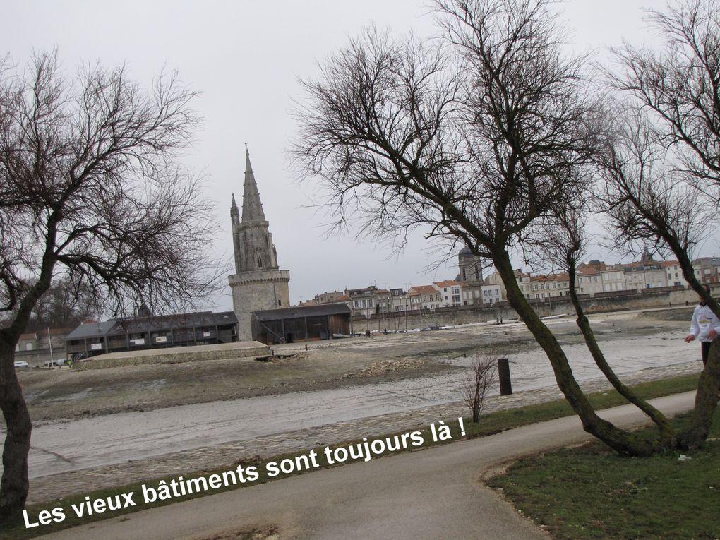 Les Minimes, Allée François Peron et bord de mer, le dimanche 28 février 2010 après une nuit de tempête et des vents à 146,2 km/h.... et La Rochelle et Les Minimes après la tempête du 28 décembre 1999.