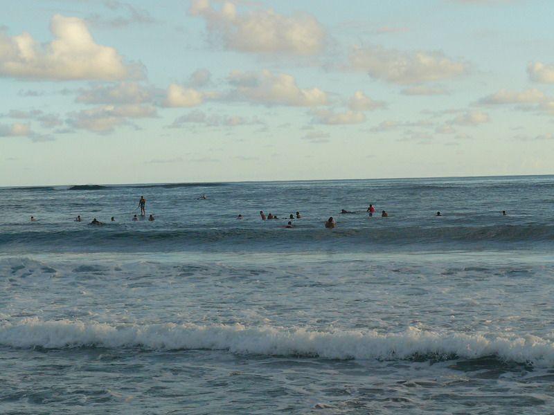 Album - Surfeurs à Papara