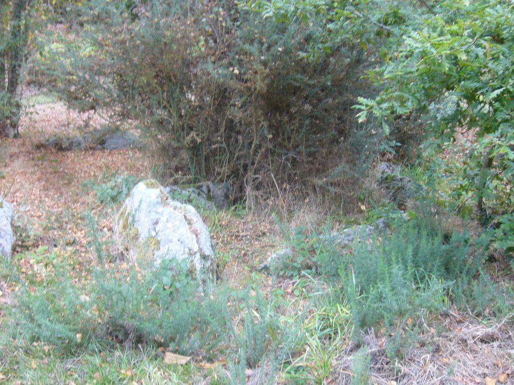En se promenant du coté de Penmarc'h, Le Guilvinec, Plomeur et Léchiagat Tréfiagat