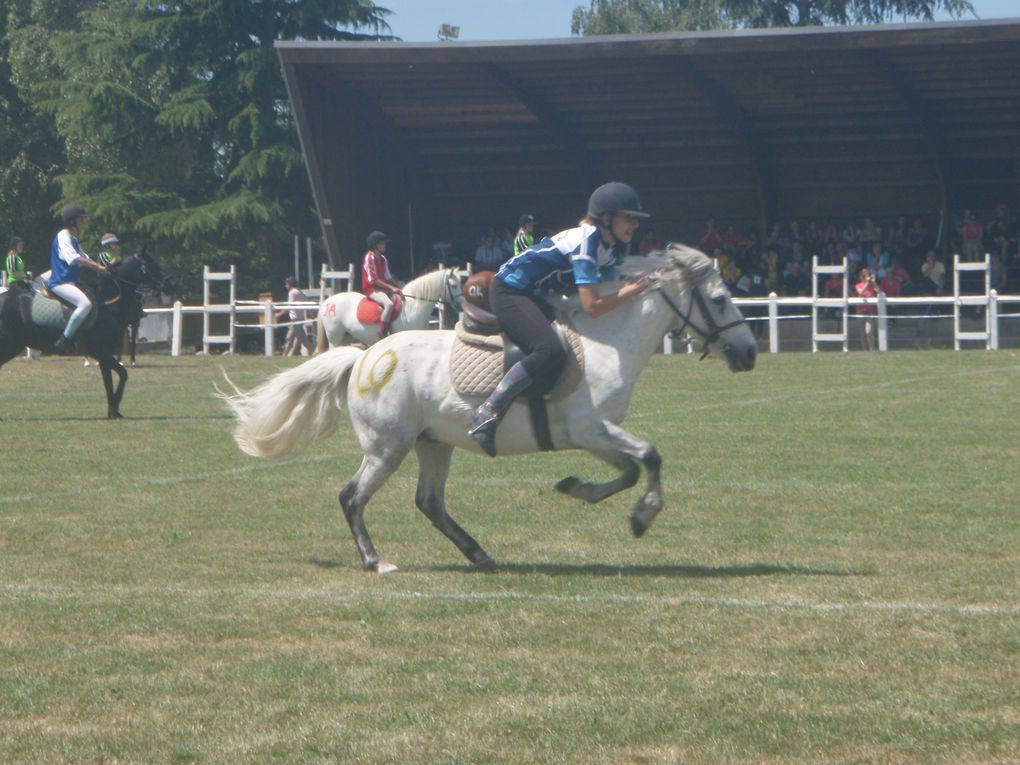 Album - France-2011-Equitation