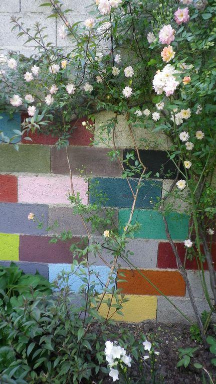 Album - beton-et-plantes