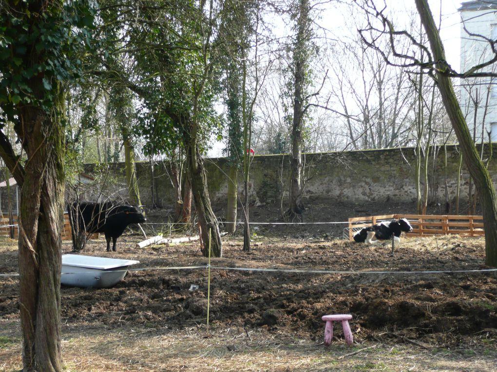 Album - Initiative-Essonne-du-11-mars-2010