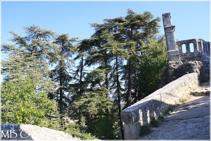 Album - La montagne de Lure