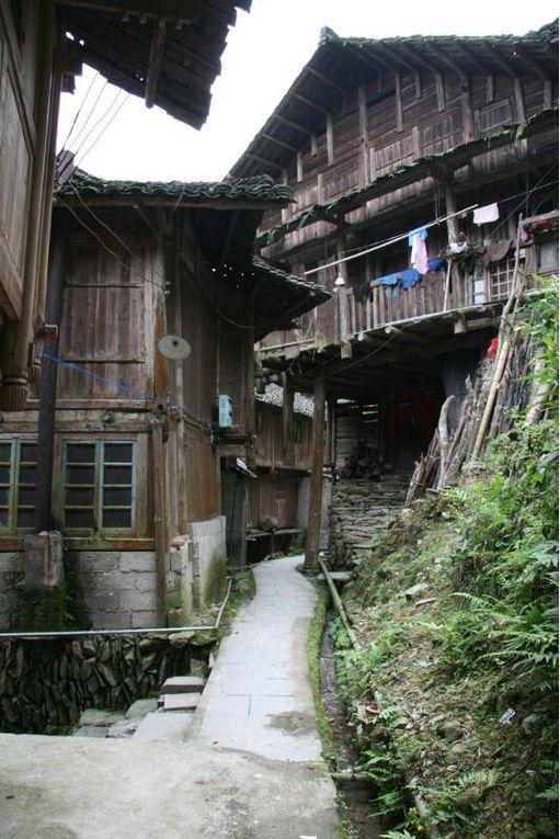 Album - Yangzhou-Longsheng
